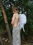 Angel Boy looking over shoulde