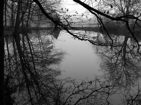 The holy marsh by 0IZ