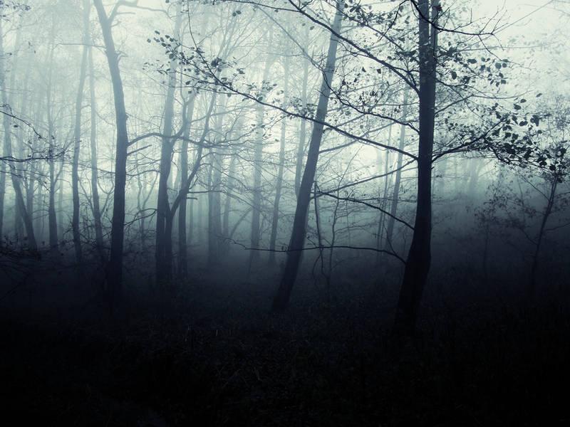 Woods to Conjure II by 0IZ