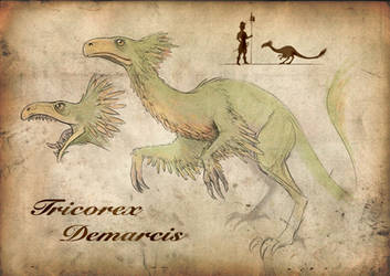 Tricorex Demarcis by Wenlock