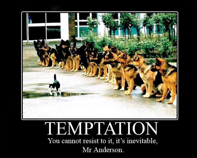 14: Inevitable by Animally