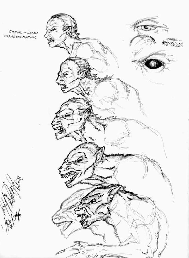 Wolf Transformation Sequence Male Werewolf T...