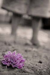 alone by creative-lens