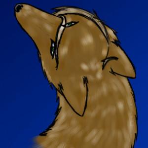 OokamiFreak's Profile Picture