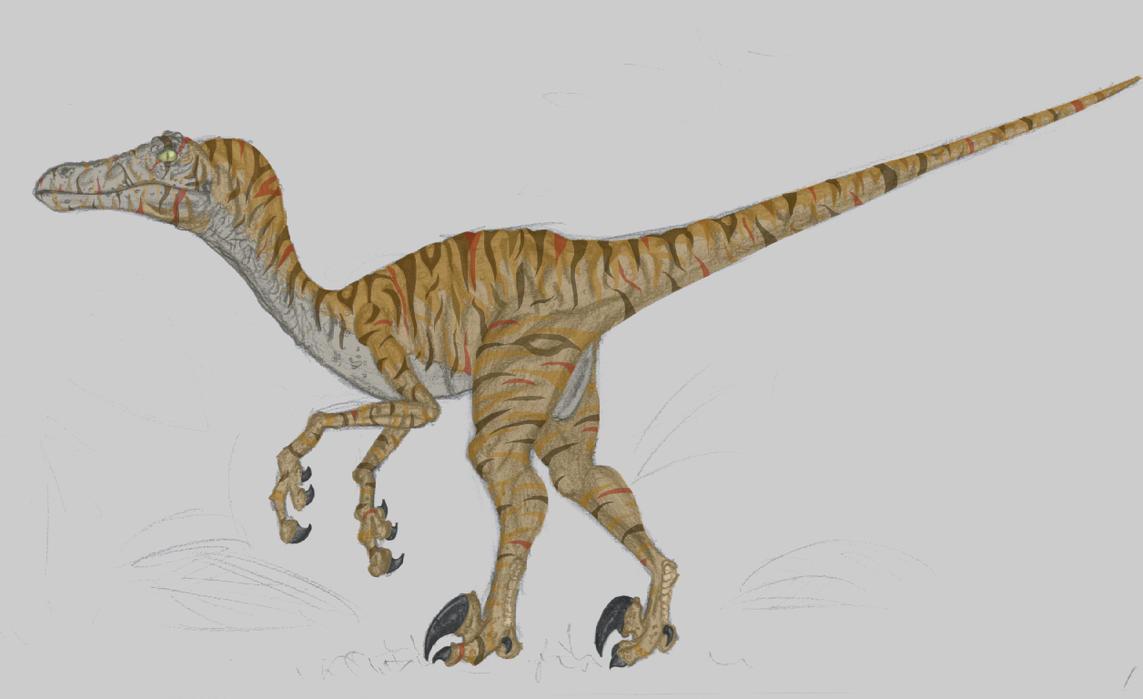 Jurassic Park Velociraptor by pokerpete on DeviantArt