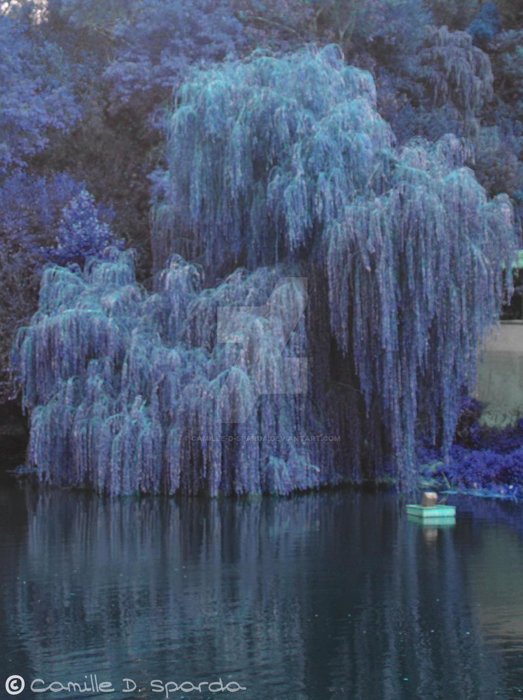 Tree-version-bleu008