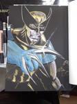 Wolverine Paint Pen on Black
