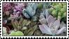 stamp - plantastic by manqo-tea