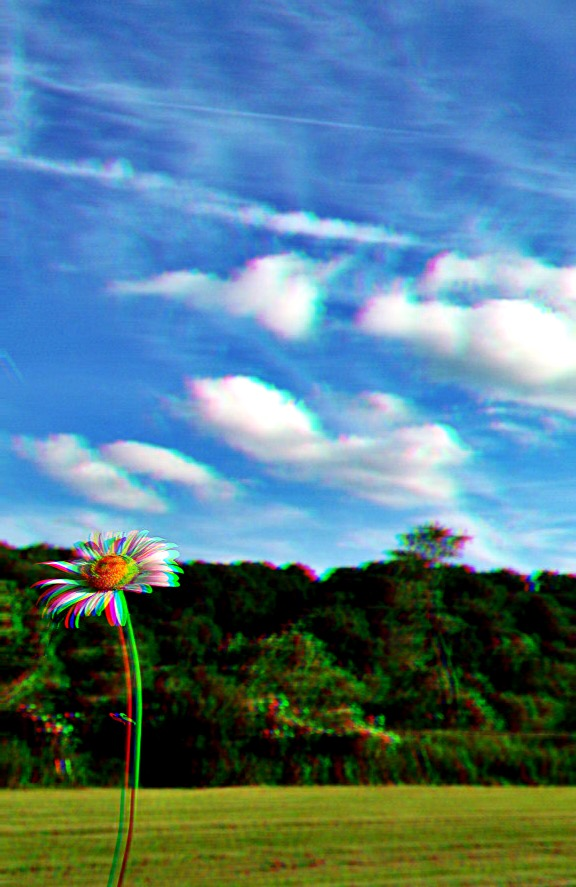 Sweet Springtime by likesinkingships