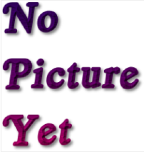 SilverKitten89's Profile Picture