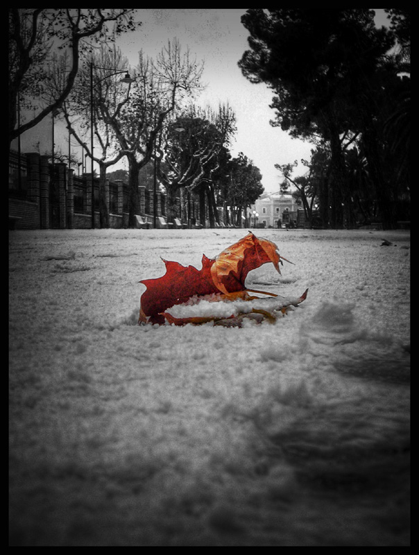 Snow by Mefistofelicat