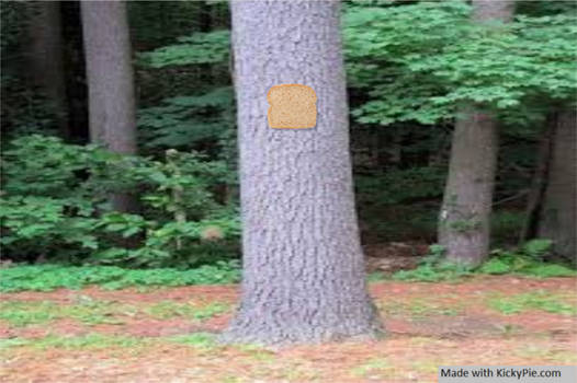 Bread-stapled-to-a-pale-tree