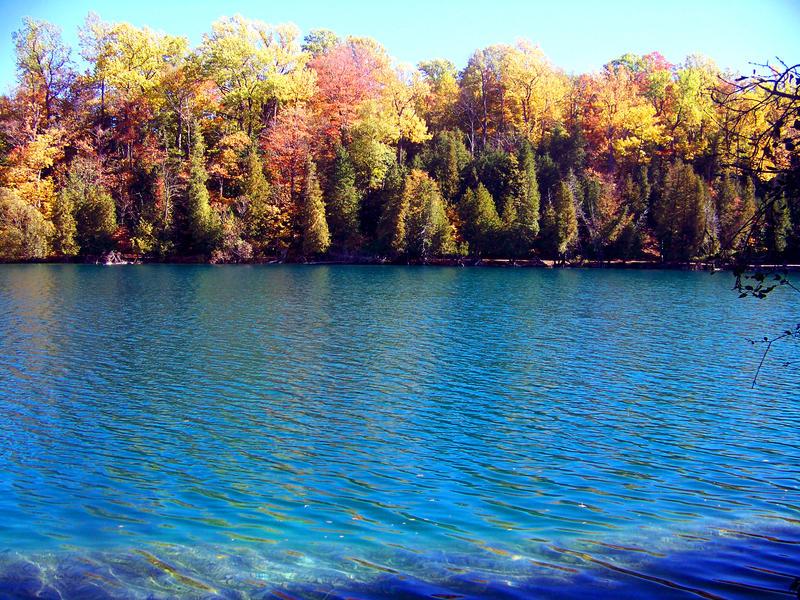 Autumn's Reflection by pinkxfuzziexkitties