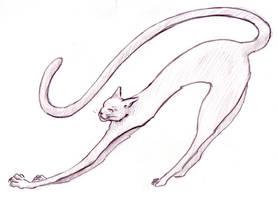 Happy cat is happy by greymattre