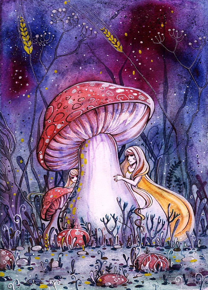 Mushroom fairies by MaryIL on DeviantArt  Mushroom fairie...