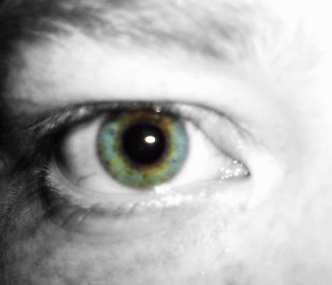 New EyeD...