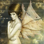 Golden Beauty by Birdsatalcatraz