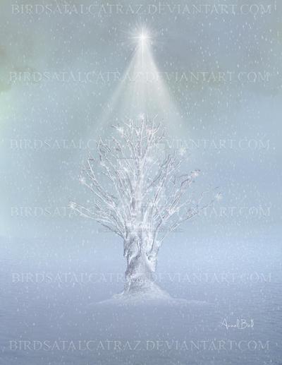 Merry Christmas by Birdsatalcatraz