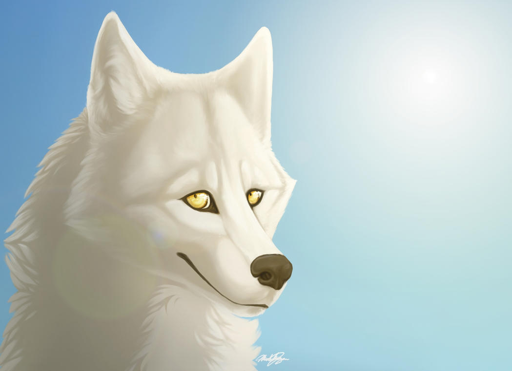 Pidiendo fotos ^^ A_typical_wolf_drawing_by_the_lazy_artist-d48cayo