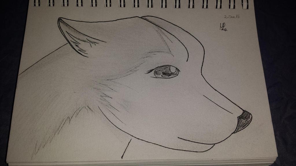 Wolf~Luna by Drawingsdream