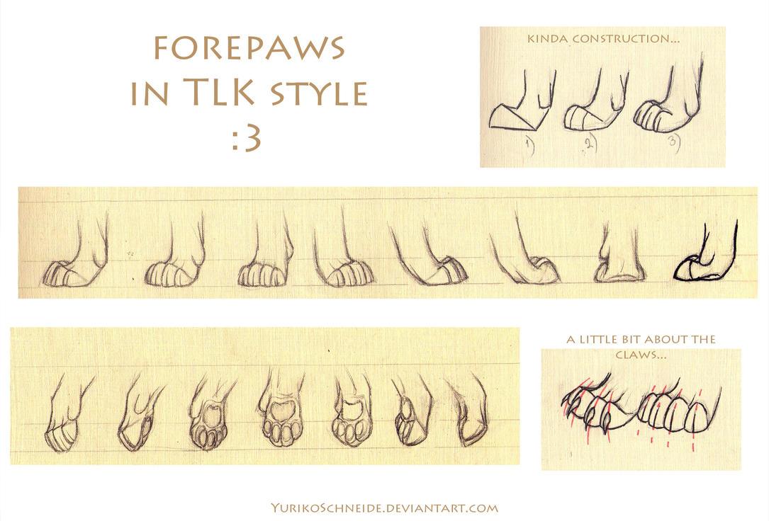 TLK Forepaws Refsheet Tutorial by YurikoSchneide