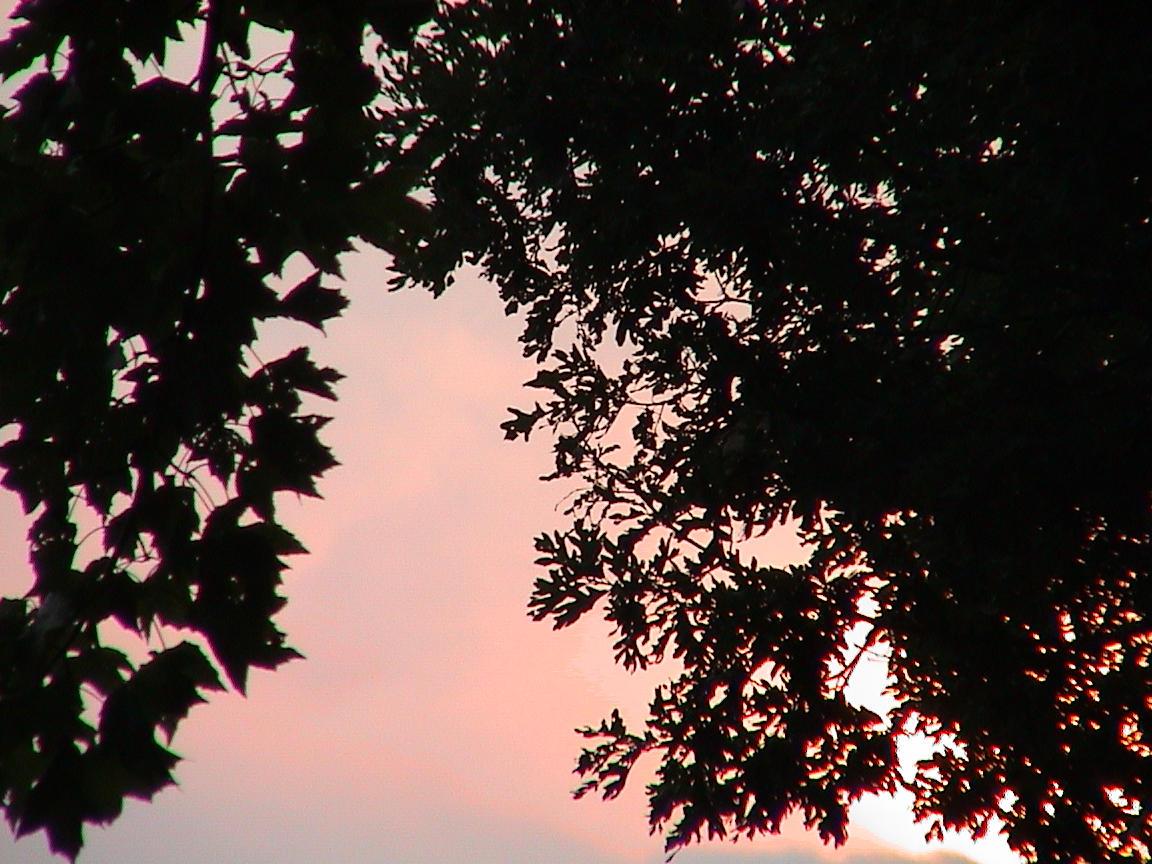 sunset at shepherds lake by emi-chan