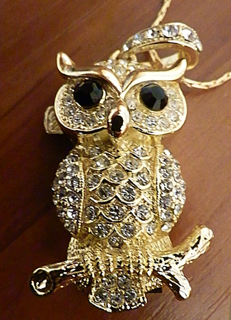 my new flash-owl O,O by LadyOwl