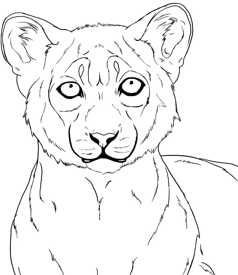 Line Drawing Of Lion : Pin lion line drawing on pinterest