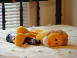 Drunk Lion by MrE88k