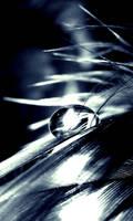 flash by tangleduptight