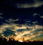 the last light by tangleduptight
