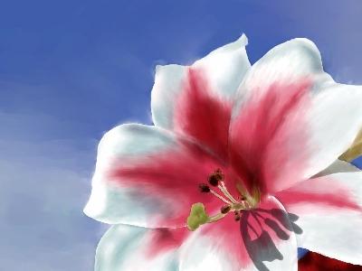 flower by Lia83