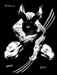 Wolverine Black and White by JesseAllshouse