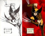 Wolverine With Original Ink