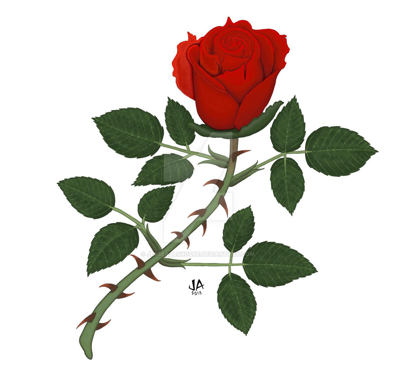 Rose Digital Color