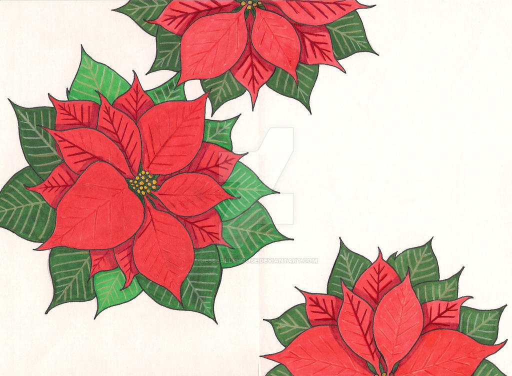 Poinsettia Holiday Card by JesseAllshouse
