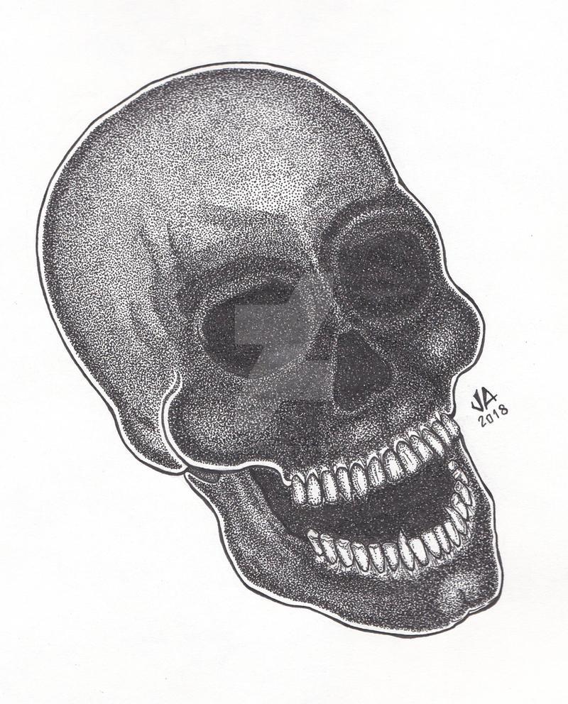 Skull Stippling Pen and Ink by JesseAllshouse