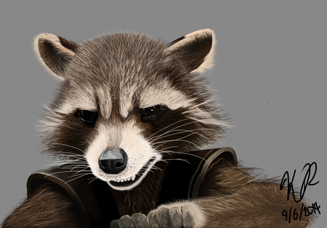 Rocket Raccoon by Butterlord120 on DeviantArt Raccoon Drawing