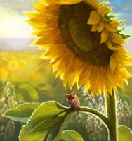 Little Mouse in Sunflower Field