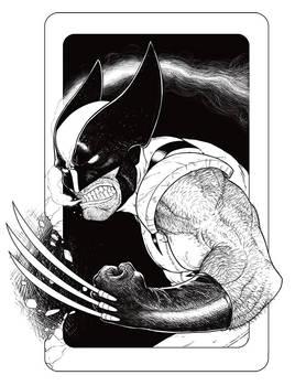 Sideshow: Wolverine