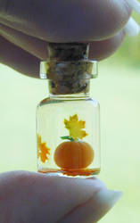 Tiny Pumpkin and Autumn Leaves by jen4eternity