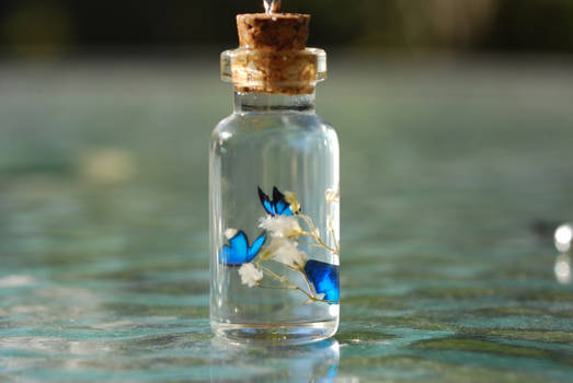 Blue Butterflies in Bottle by jen4eternity