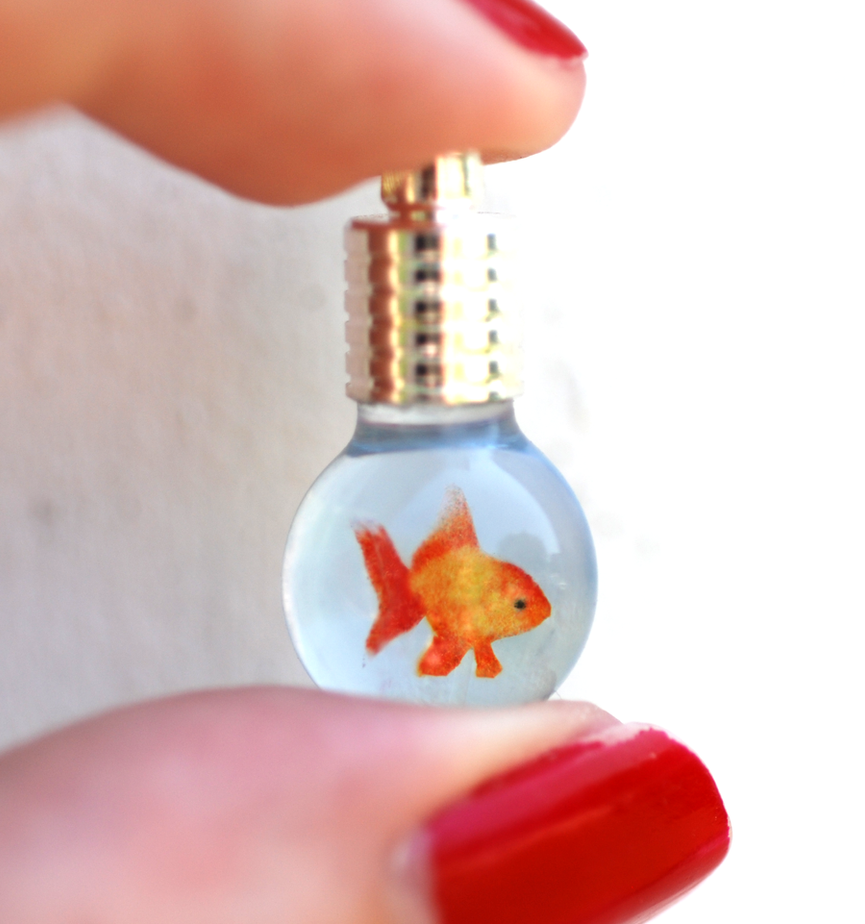 A Tiny Goldfish Miraculously Survives A Surgery That Defied The Odds!!
