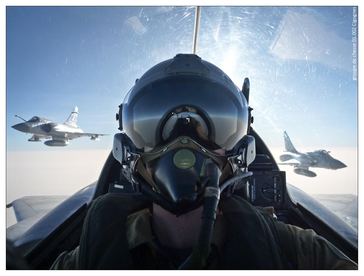 Flight leader by Cigognes