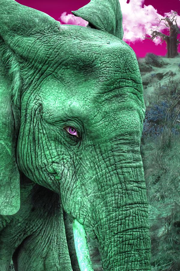 Elephant-digital-art by ArtworksProd
