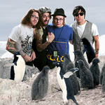 fall out boy with penguins