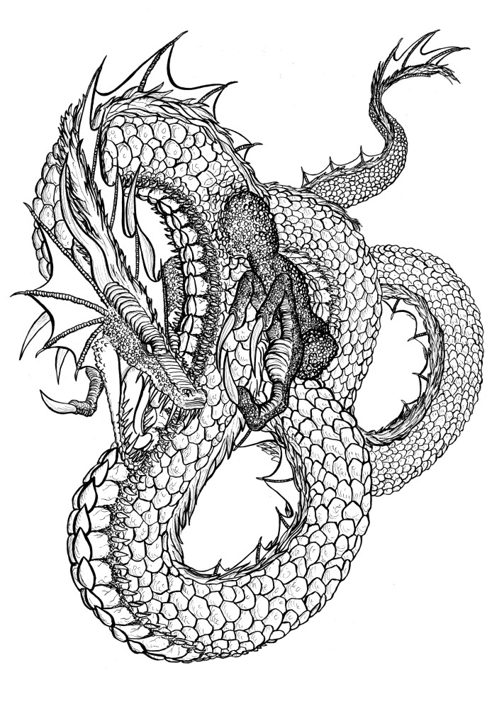 Dragon Chino Tinta by WolfAndRaven on DeviantArt