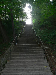 Stairs in Woods of Ansonia, CT