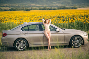 Woman with a car by athrawn