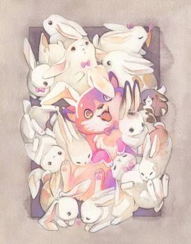 Buncorgi and Her Bunfriends!